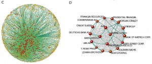 network of multi-national corporations