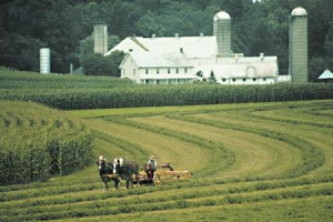 Amish - Pennsylvania